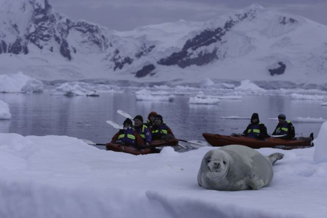 © Anjali Pande/Oceanwide Expeditions - Sortie en Kayak - Antarctique