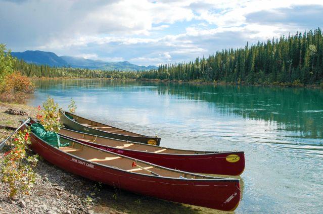 Voyage De Whitehorse à Dawson sur le Yukon