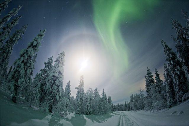 Hauts Plateaux de Kilpisjarvi - Laponie - Finlande