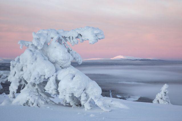 Voyage Au cœur des montagnes de Kiilopää
