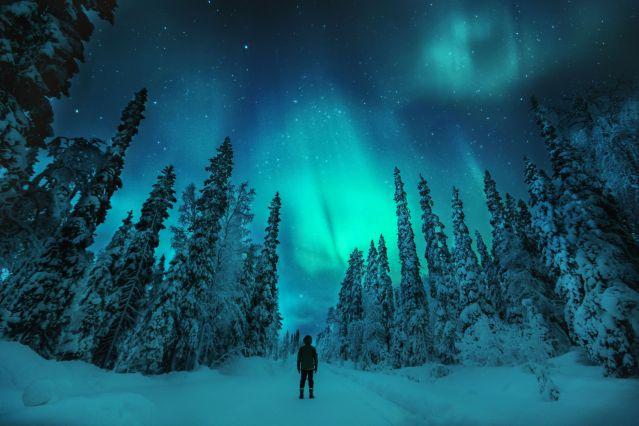 Voyage Laponie : au cœur de l'hiver