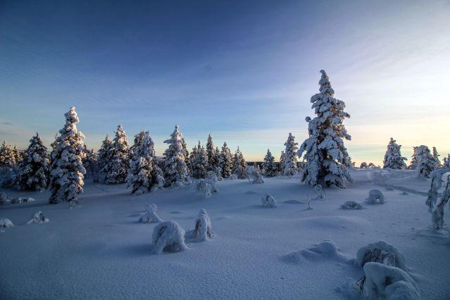 Voyage Aventures sami au lac Inari