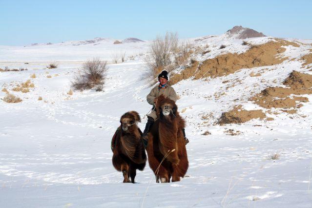 Voyage La Mongolie en hiver : du désert de Gobi à la vallée de l'Orkhon
