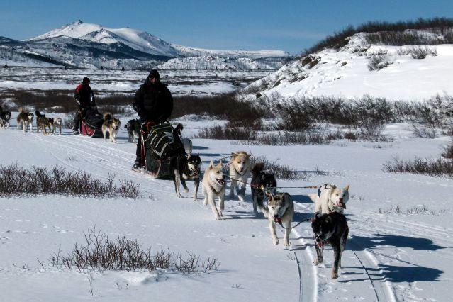 Voyage Aventure en traîneau au nord de la Mongolie