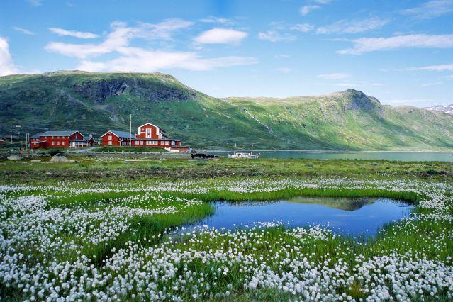 Jotunheimen - Norvège