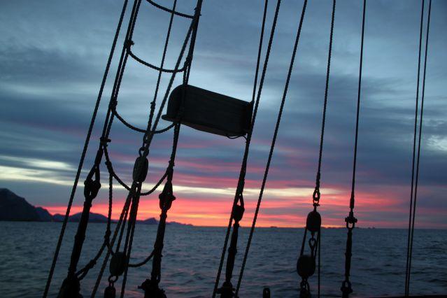 Voyage Aurores boréales et baleines au départ de Tromsø