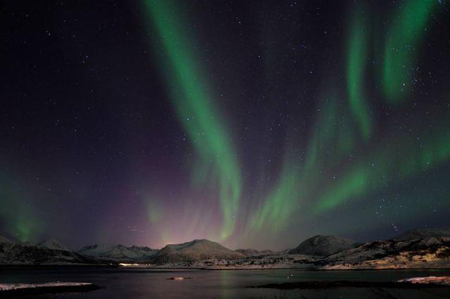 Voyage Baleines, orques et aurores boréales