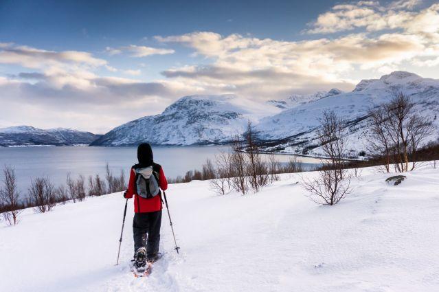 Entre mer et montagnes au bord de tromso - Norvège