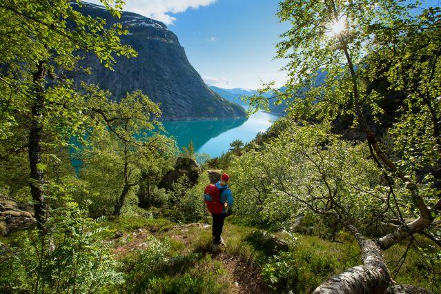 Voyage Kayak et randonnées dans les fjords