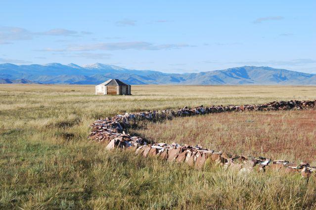 © Irina Baranova - Yourte près du site archéologique Arjaan - Sibérie