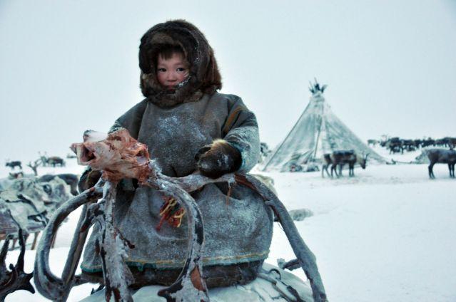Eleveurs de rennes Nenets - Yamal - Sibérie - Russie
