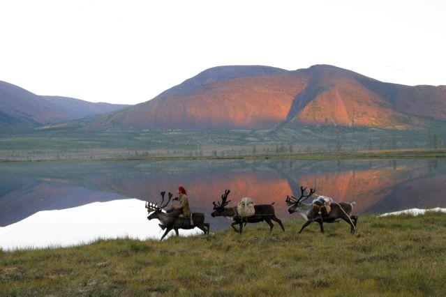 ©  Alexey Golovinov - Chez les éleveurs de rennes Evènes - Montagnes de Verkhoiansk - Yakoutie - Sibérie - Russie