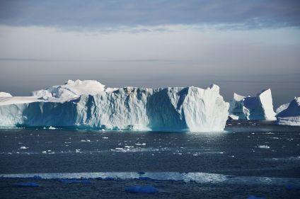 Manchots et baleines de la péninsule Antarctique