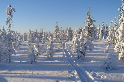 Raid en ski de fond en Laponie