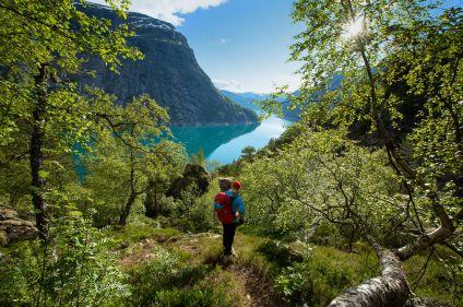 Kayak et randonnées dans les fjords