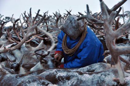 A la rencontre du peuple des Nenets