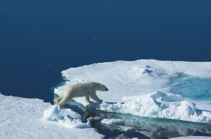 Découverte de l'archipel du Svalbard