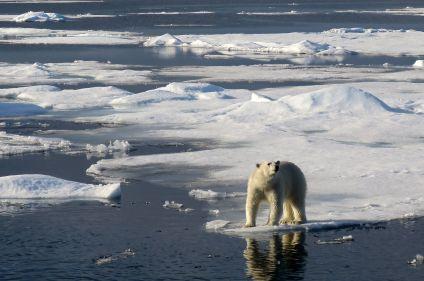 Tour de l'archipel du Svalbard