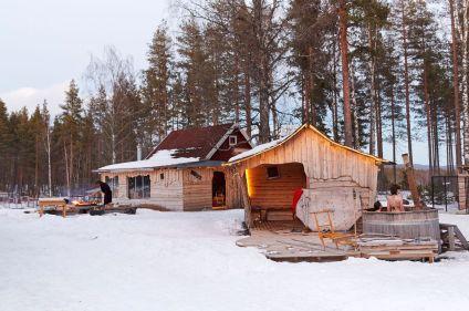 Dans les forêts de Laponie