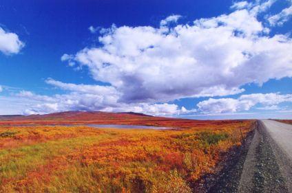 Mer de Béring et les routes de Nome